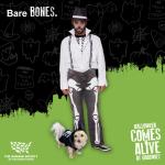 Halloween 2020 Bare Bones Dog